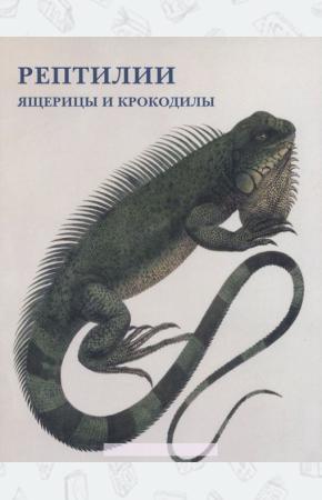 Рептилии. Ящерицы и крокодилы (набор из 15 открыток)