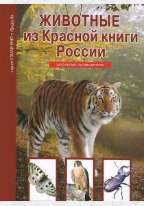 Афонькин Жуки и другие удивительные насекомые