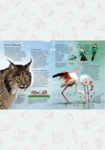 Животные. Энциклопедия самых интересных фактов