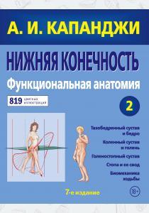 Нижняя конечность: Функциональная анатомия (обновленное издание)